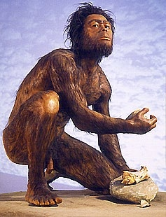 Artist rendition of Homo Habilis. (Click on image to view larger.)