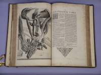 Cowper Anatomie dissected hand and arm over book
