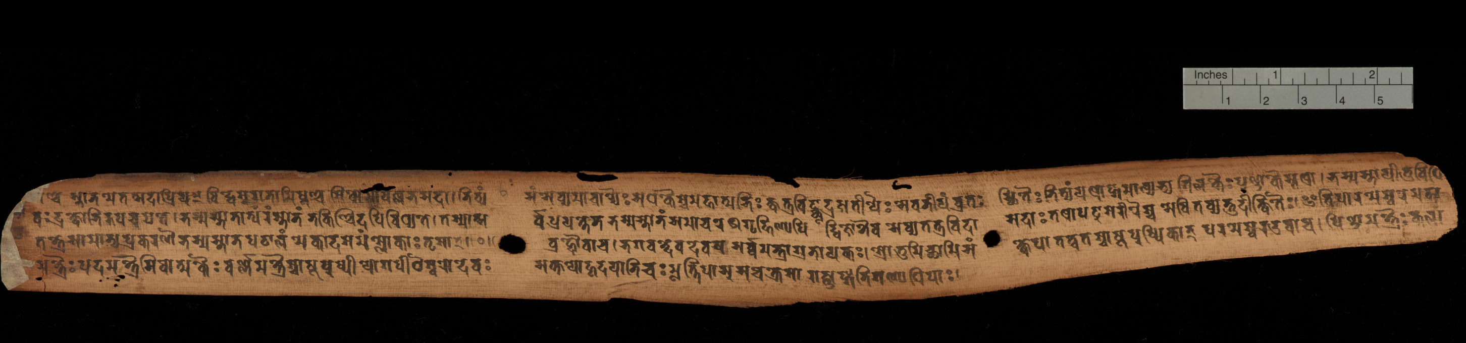 "Pārameśvaratantra Cambridge University Library MS Add.1049.1. f. 12 of 124. ""One of the oldest known dated Sanskrit manuscripts from South Asia, this specimen transmits a substantial portion of the Pārameśvaratantra, a scripture of the Śaiva Siddhānta, one of the Tantric theological schools that taught the worship of Śiva as ""Supreme Lord"" (the literal meaning of Parameśvara). No other manuscript of this work is known, but nine chapters are transmitted in the Prāyaścittasamuccaya of Hṛdayaśiva (see Add. 2833), where the work is referred to as the Puskaratantra or Puṣkara-Pārameśvaratantra (see Goodall 1998, particularly p. xliii). According to the colophon, it was copied in the year 252, which some scholars judge to be of the era established by the Nepalese king Aṃśuvarman (also known as Mānadeva), therefore corresponding to 828 CE."""