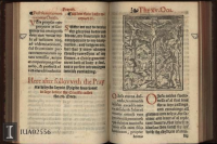 A very unsual English 16th century book of hours in the Rare Book and Manuscript Library, University of Illinois at Urbana-Champaign. 