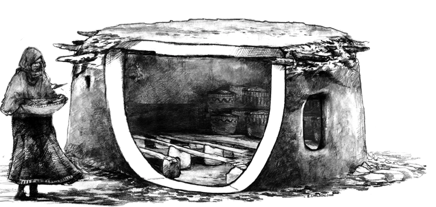 "Interpretive reconstruction of prehistoric granary. ""The exposed area illustrates the upright stones supporting larger beams, with smaller wood and reeds above, and finally covered by a thick coating of mud. The suspended floor sloped at 7° and served to protect stored foods from high levels of moisture and rodents (Illustration by E. Carlson)."""