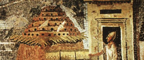 Egyptian Columbarium for pigeon breeding, a mosaic from Palestrina, first century BCE.