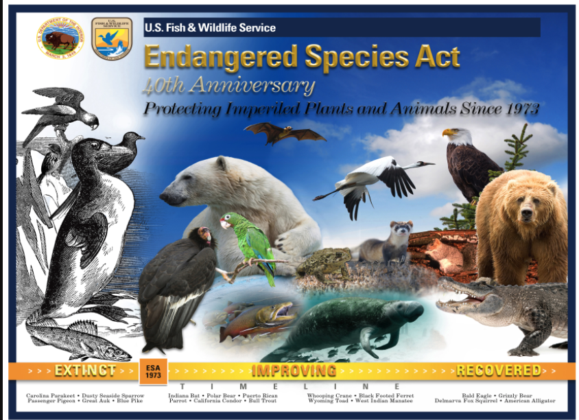 Poster for Protect the Endangered Species Act