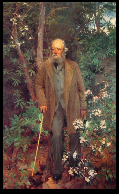 Frederick Law Olmsted, oil painting by John Singer Sargent, 1895, Biltmore Estate, Asheville, North Carolina