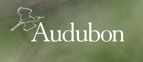 Logo of the Audubon Society
