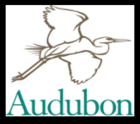 Alternative Audubon logo