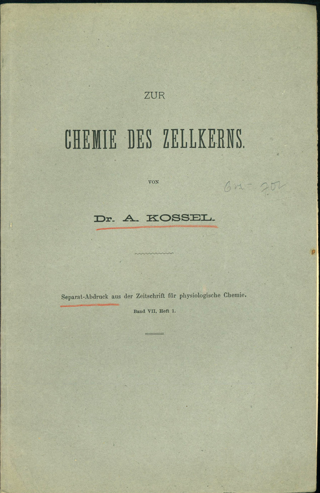 Upper printed wrapper of the separate offprint of Kossel's Zur Chemie des Zellkerns.