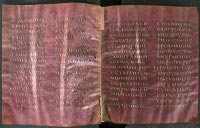 Folios 23v and 24r of the Codex Petropolitanus Purpureus. (View Larger)