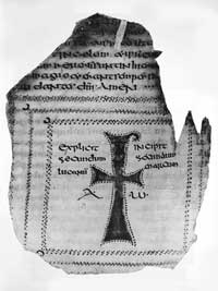 Folio 149v of the Codex Usserianus Primus.