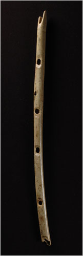 A flute, found in the hills west of Ulm Germany, that is believed to be 35,000 years old.
